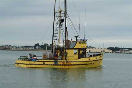 Photo: Fishing boat in Humboldt Bay