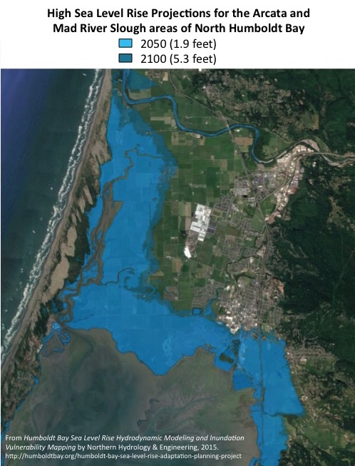 Arcata City Council Study Session on Sea Level Rise Planning